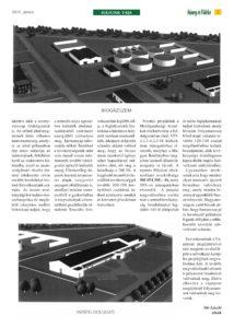 https://sumeg.hu/wp-content/uploads/2021/06/SV-2021június_page-0007-min-214x300.jpg